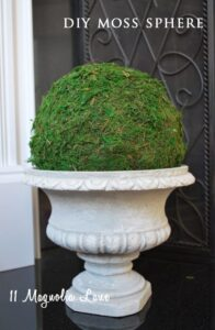 DIY Moss Sphere
