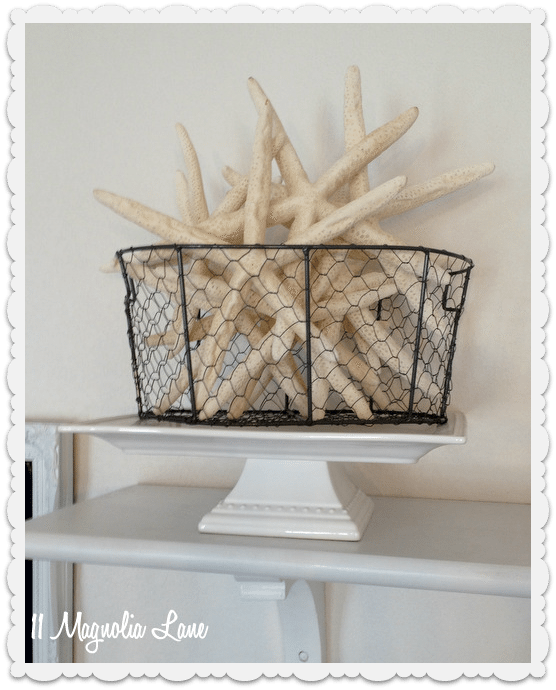 starfish in chicken wire basket