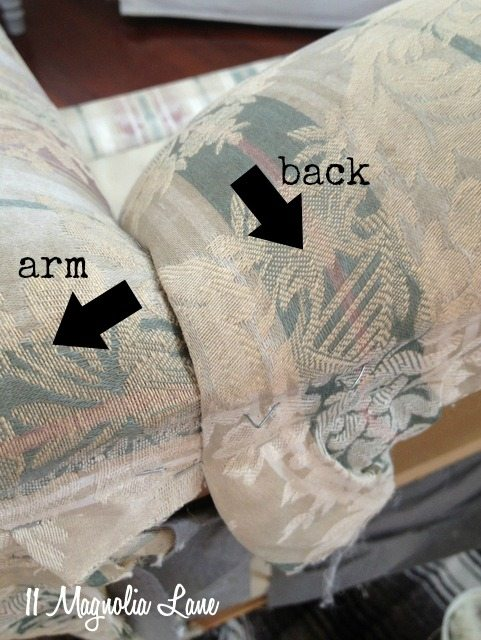 back-and-arm-labeled