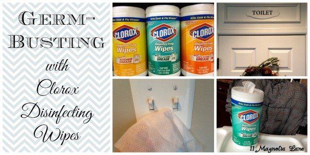 Clorox_Disinfecting_Wipes_Photo