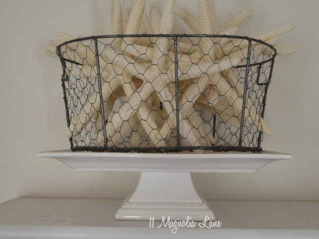 starfish in basket