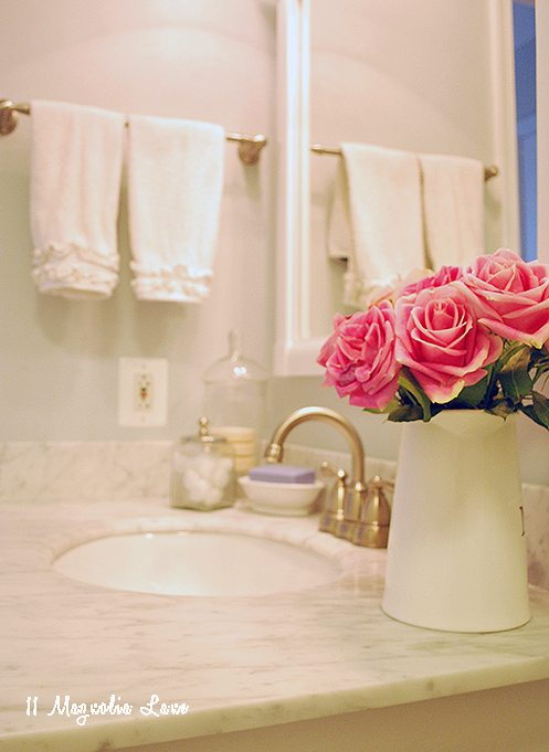 close-up-roses-bathroom