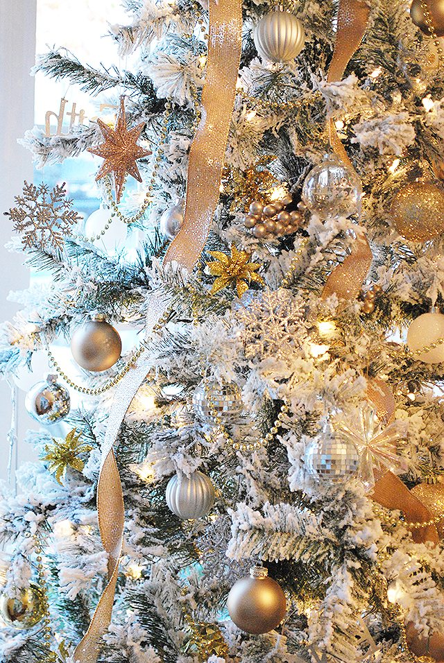 close-up-at-home-tree