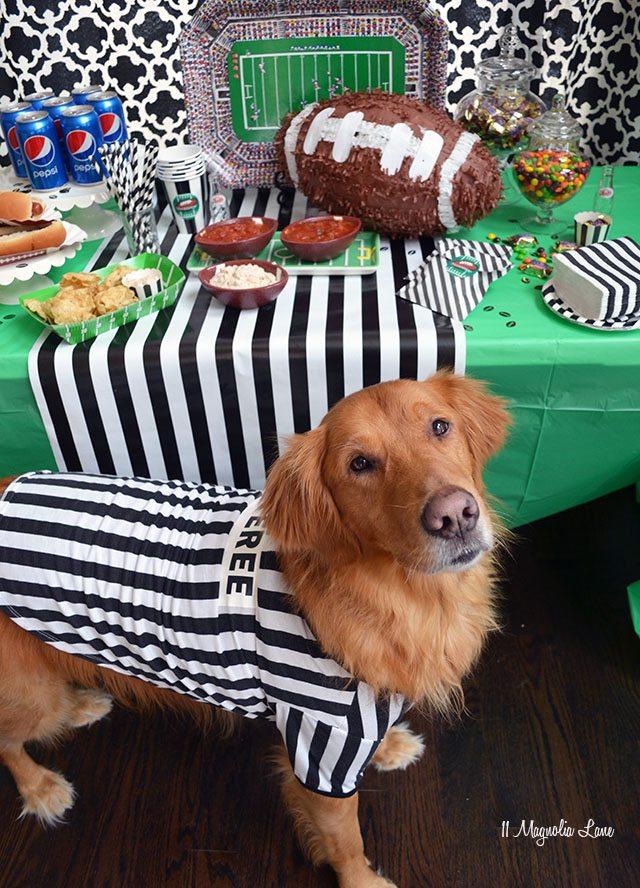 The Big Game Football Party | 11 Magnolia Lane