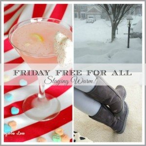 Fun ideas to help you stay warm and survive winter--drink recipe, fashion, heated spa wrap and recipes