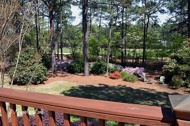 Golf party and BBQ on the back deck | 11 Magnolia Lane