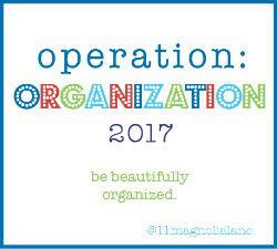 Operation: Organization 2017