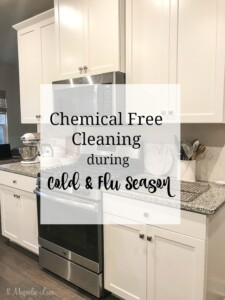 Chemical Free House Cleaning Tips During Cold & Flu Season