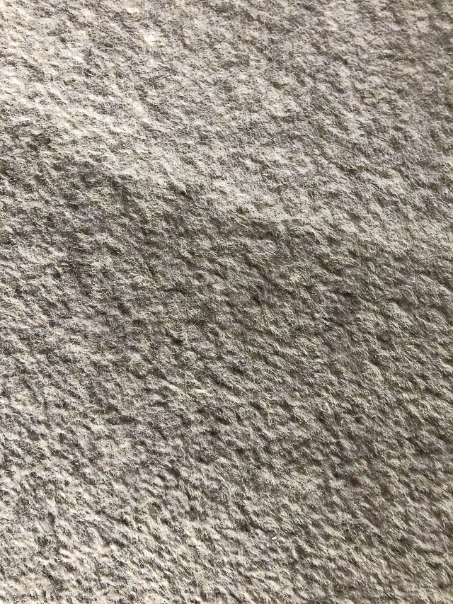 Hotel Carpet: Emergency Stain Removal