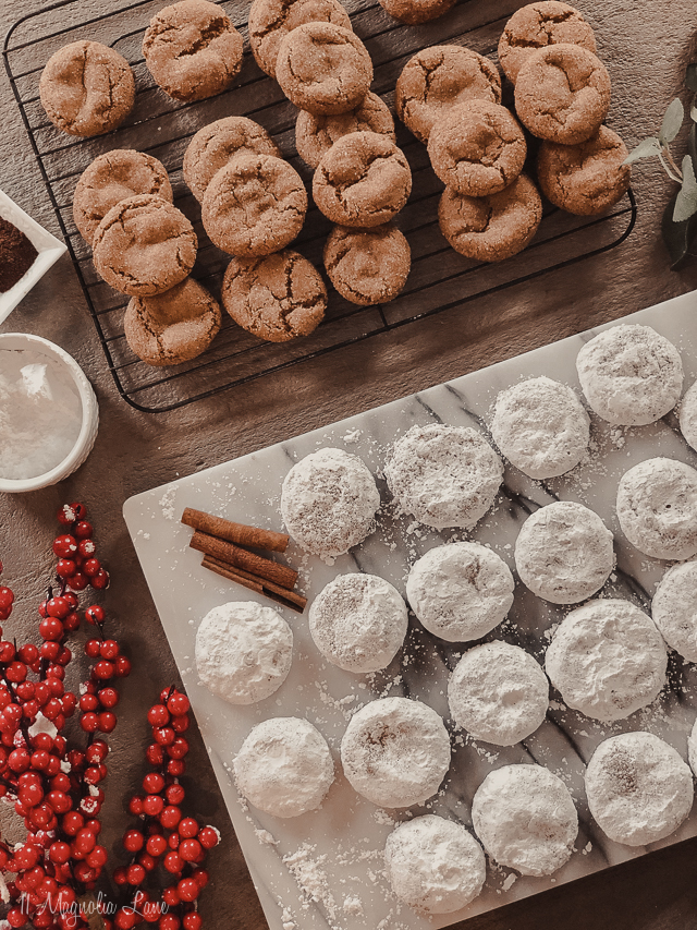 The Best Christmas Cookie Recipe {Ever}
