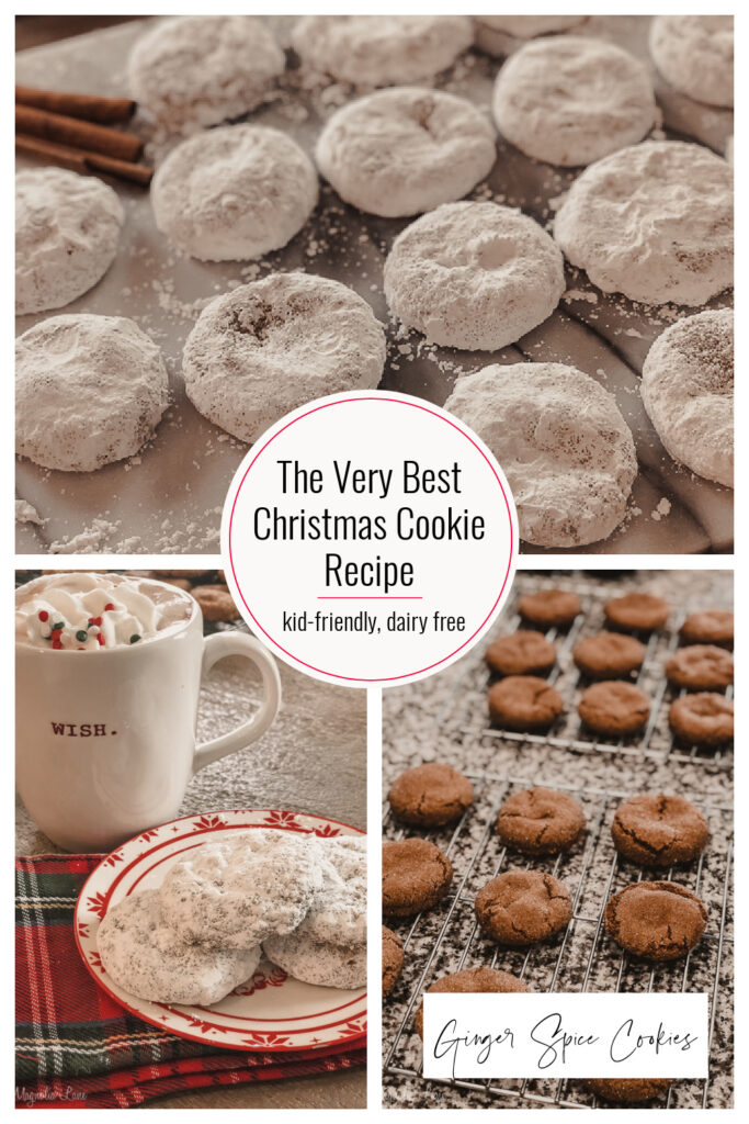 The best Christmas Cookie Recipe ever, Ginger Spice Cookies.