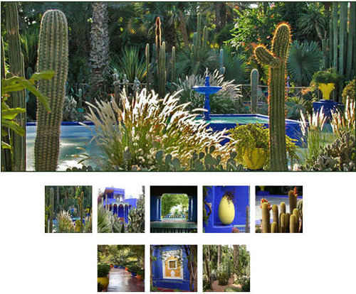 Garden Call: Yves Saint-Laurent's Jardin Majorelle
