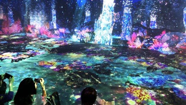 横浜駅東口直通のエンタメビル「アソビル」に期間限定で開催されている「光の深海展 OCEAN BY NAKED」のPARADISE写真