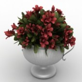 Beautiful Potted Red Flower Free 3dmax Model