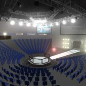 Octagon Fight Arena