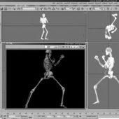 Skeleton (rigged)