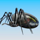 Thick Spider