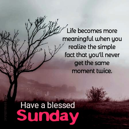 Good Morning Happy Sunday Quotes