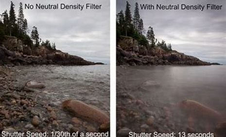neurtal density photo