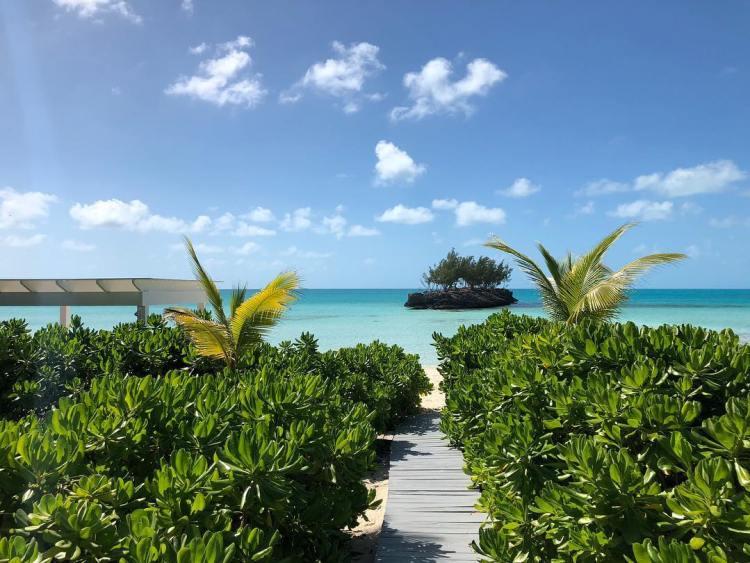 bahama 12