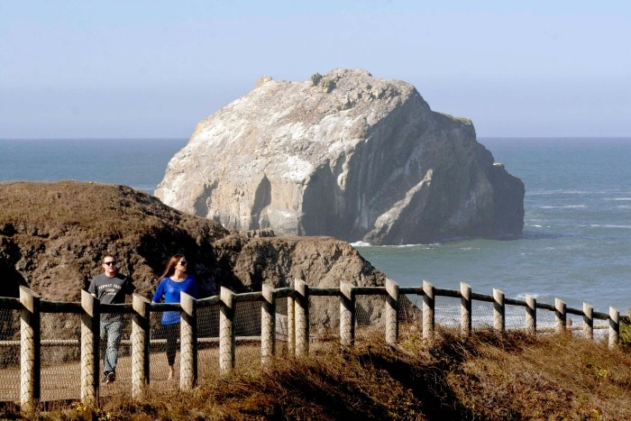 Face-Rock-Viewpoint-in-Bandon
