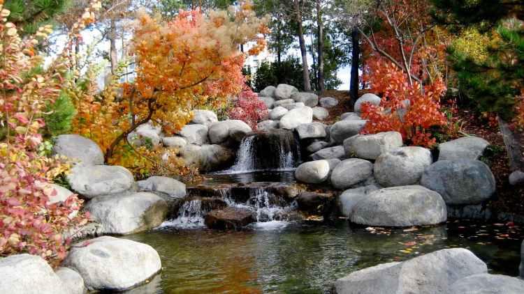autumn boulder creek environment