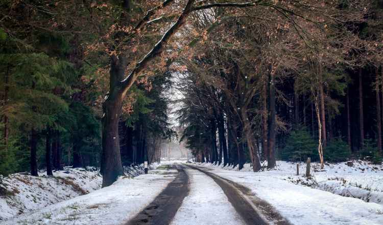 photography of road during winter season