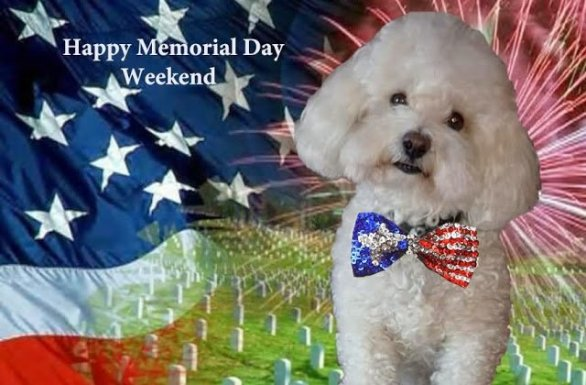 Free Download Happy Memorial Day Wallpapers To Remember