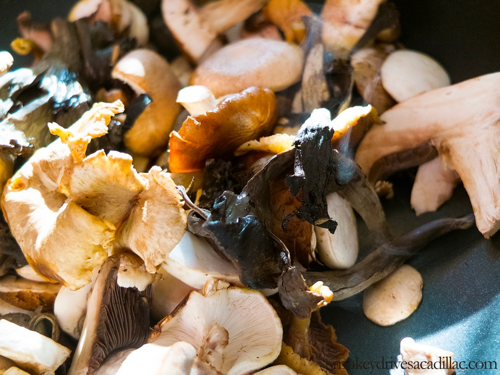 wild mushroom & amaranth risotto