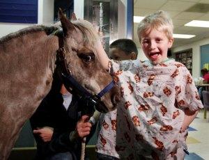 #TBT Petie the Pony