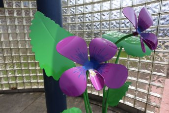 You can find our Common Blue Violet sculpture standing outside the Twinsburg Fitness Center.