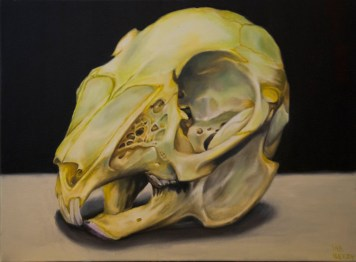 rabbit-skull-orig-and-prints