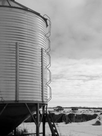 grain bin and ladder