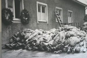 Corpses at Buchenwald concentration camp in Germany