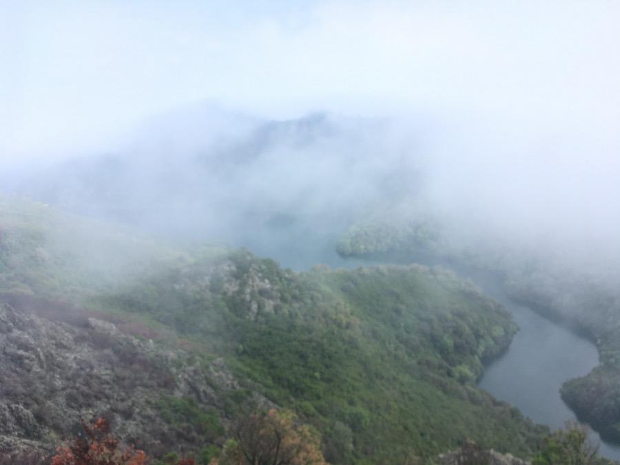 In den Wolken auf 800 m Höhe