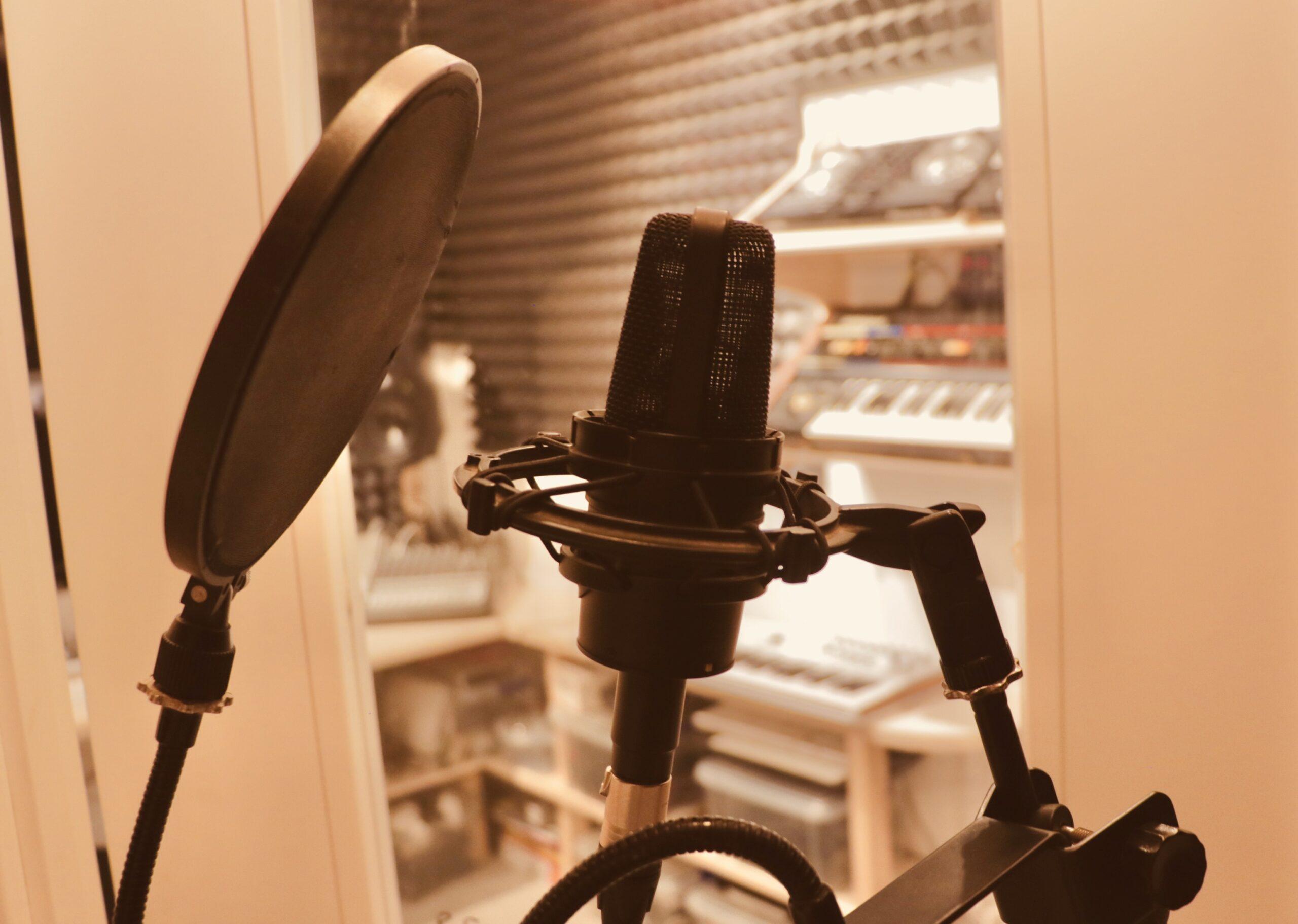 Mic - 12 Tree Studios
