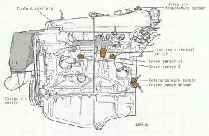 quattroworld Forums: G62 Engine Coolant Temp (ECT
