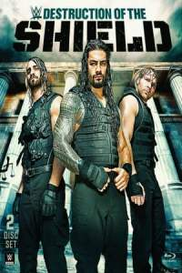 Journey to SummerSlam: The Destruction of the Shield (2014)