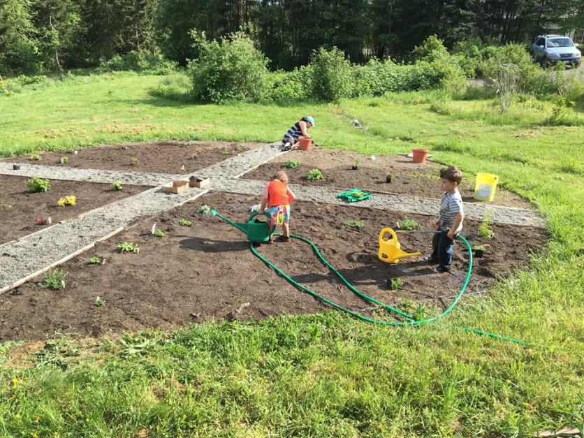 Volunteers of all ages help out in the medicine wheel garden as part of Swinomish Earth Day