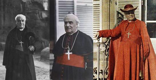 Le cardinal Luçon