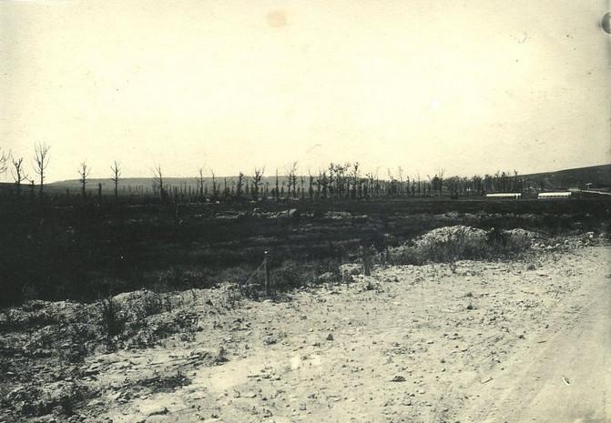 Bois de Caurières