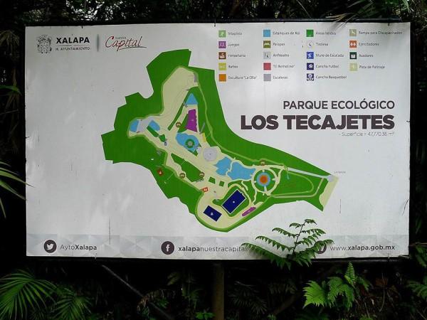 LosTecajetes (1)