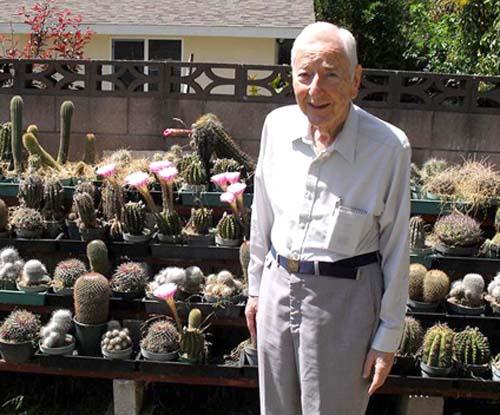 sammy-cacti