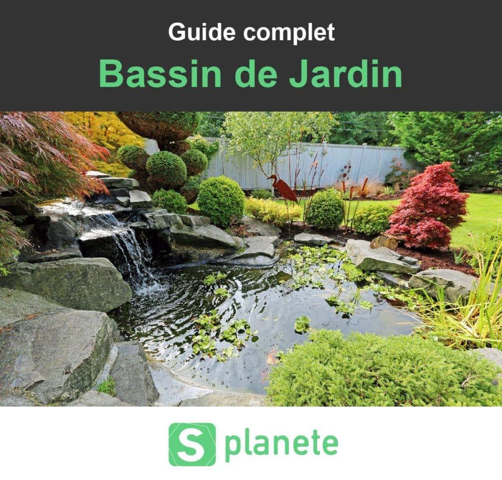 bassin de jardin construire amenager