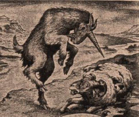 Dan_8_ram_and_he-goat