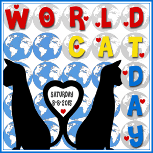 World Cat Day 8.8.2015