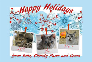 2015 eCard to mail