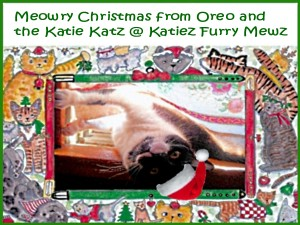 Oreo Kitty Frame2a hat grn wrds1
