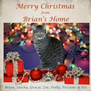 brianchristmascard2015430b
