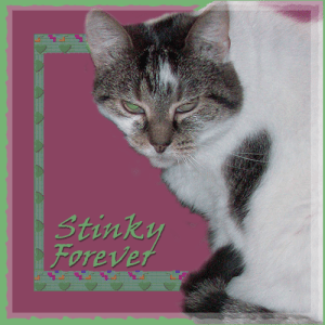Stinky FOREVER